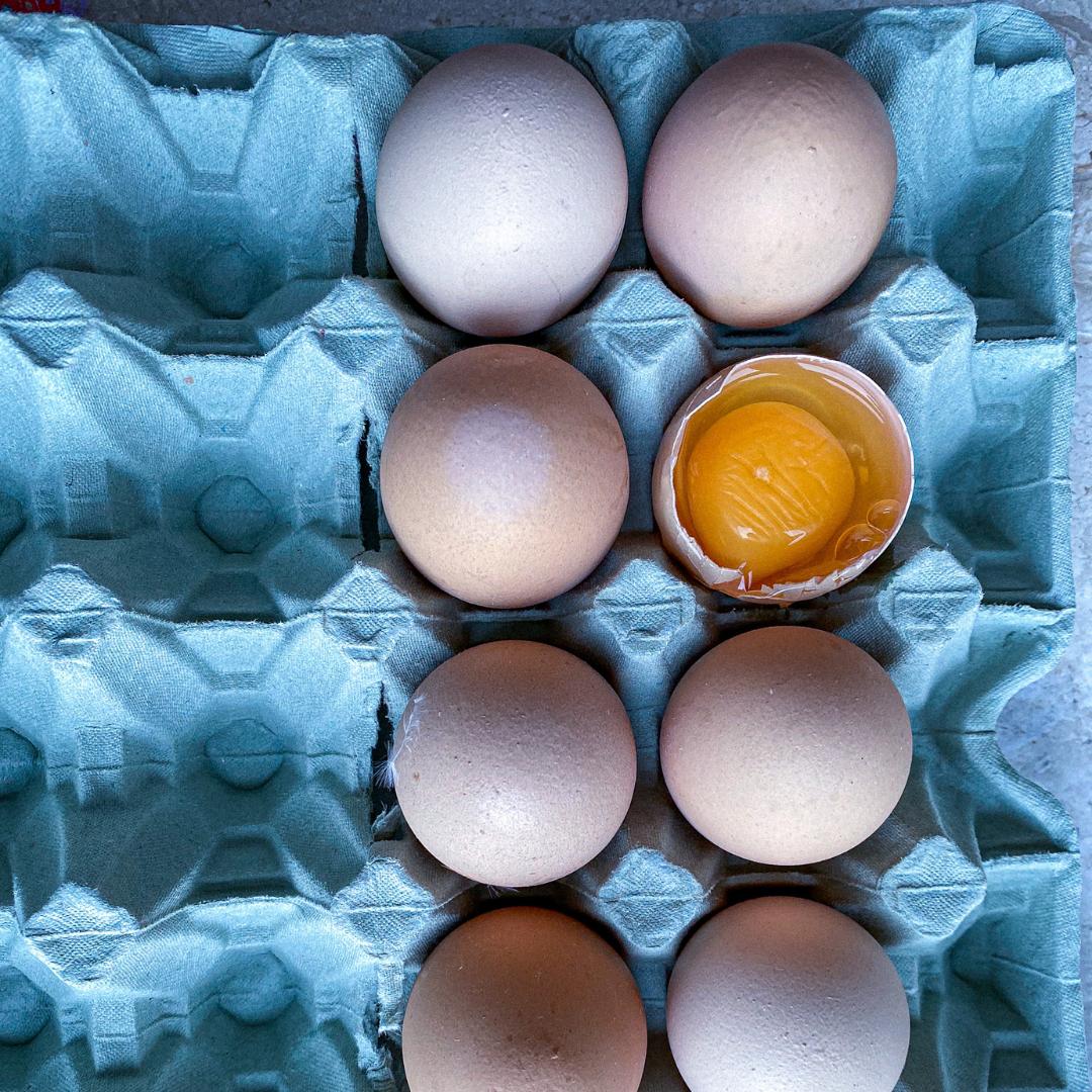 jak sprawdzić jajka